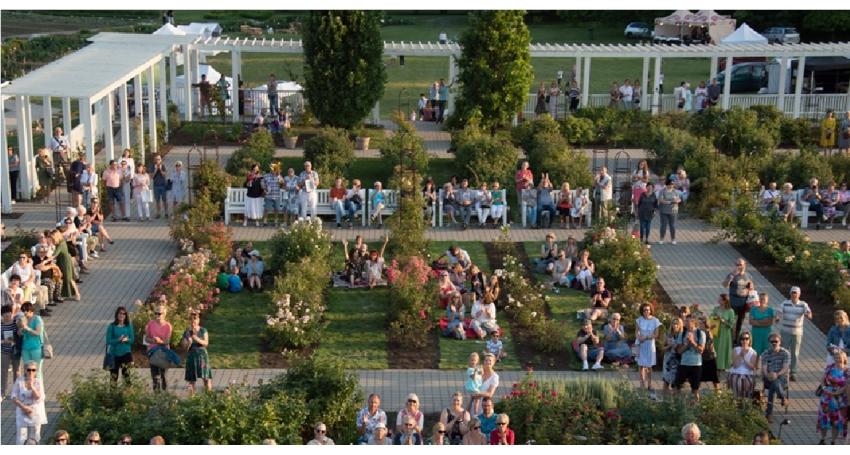 Kvapiųjų pelargonijų paroda  VDU botanikos sode